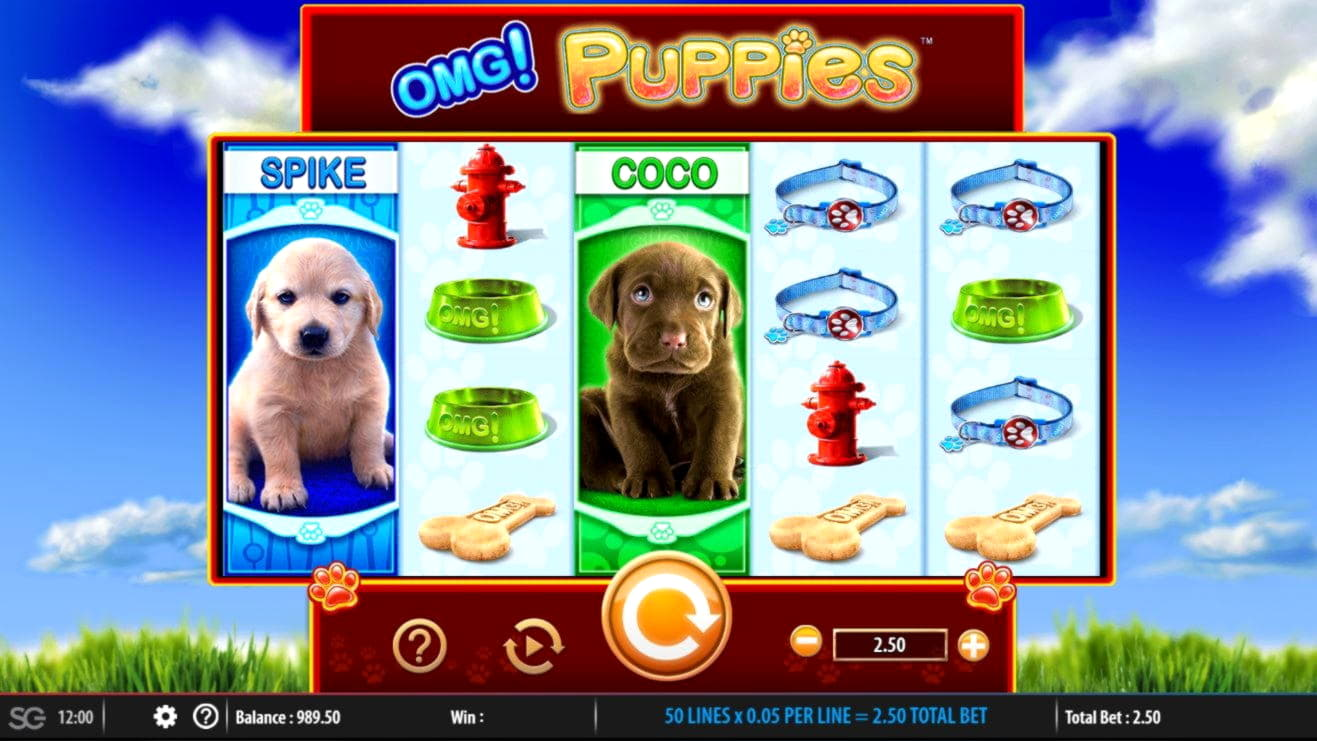 205 Free Spins Casino hos Spinrider Casino