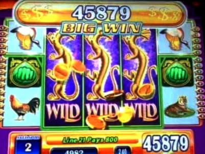 170 Free spins at Spinrider Casino